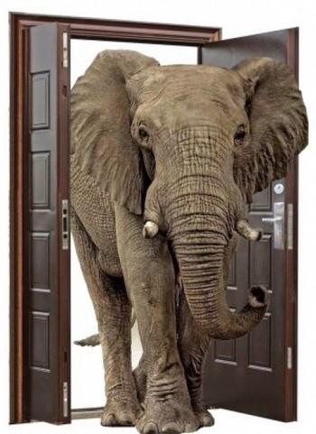 Слон проходит в дверь