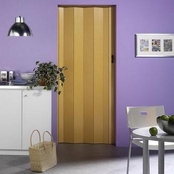 Закрытая дверь гармошка