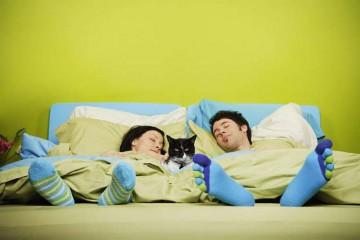 Семейная пара и кот спят в постели