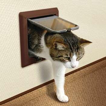Кот входит через кошачью дверь
