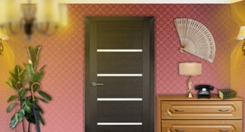 Дверь фрамир из комнаты